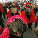 Romanian Bear Festival