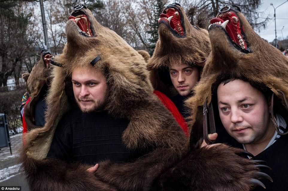bear festival odd