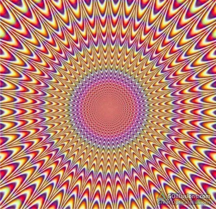 optical illusion best