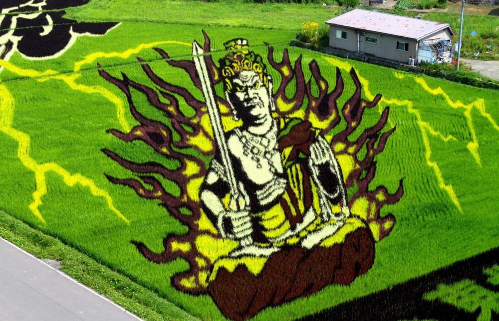 rice field art japan