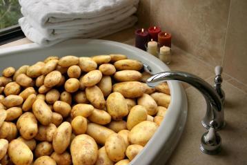 potato weird news