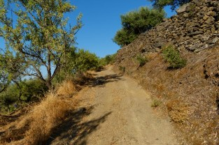 The dirt track up the mountain to the families land and orchards.