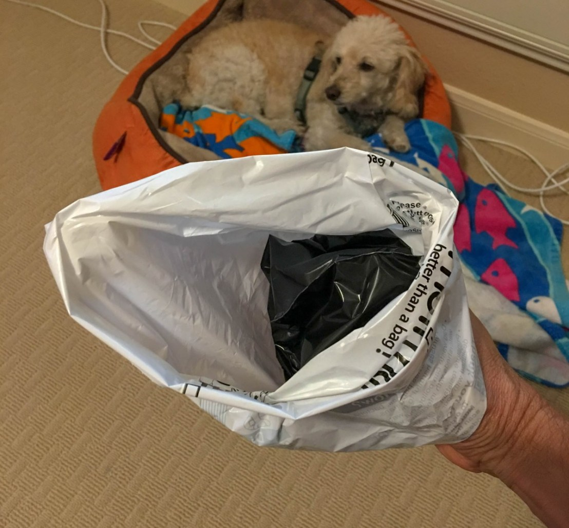 Pull the Open End of The Bag Over the Poo-Hand