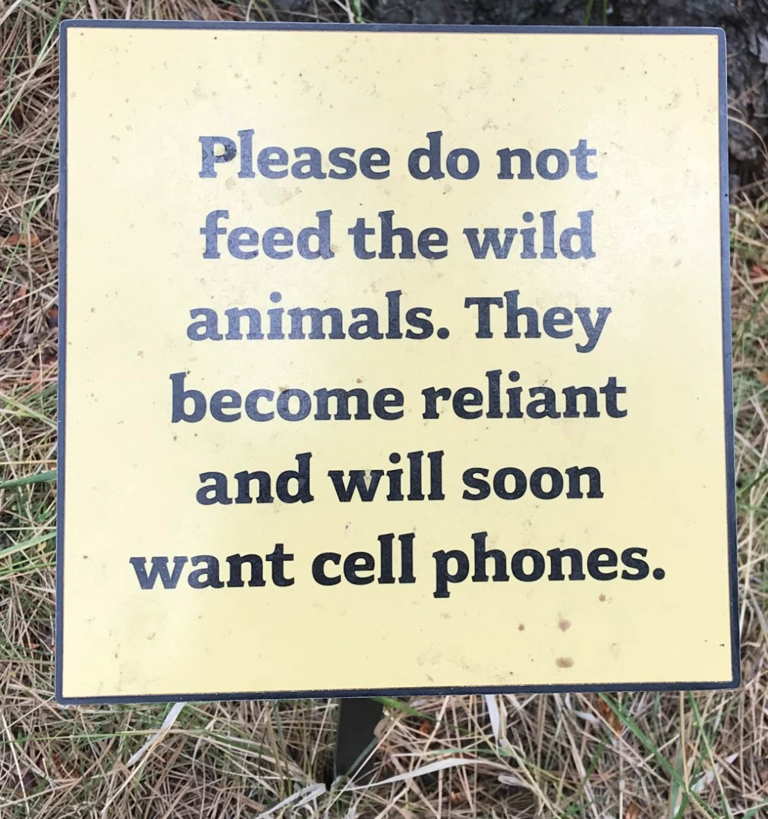 Don't Feed The Animals Signage