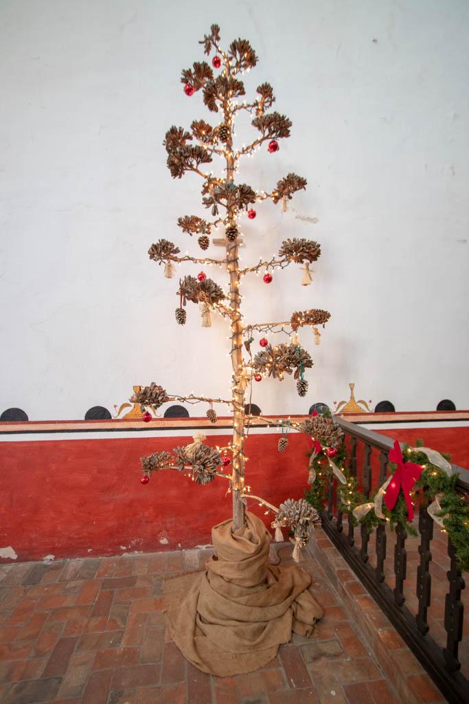 Century Plant Christmas Tree