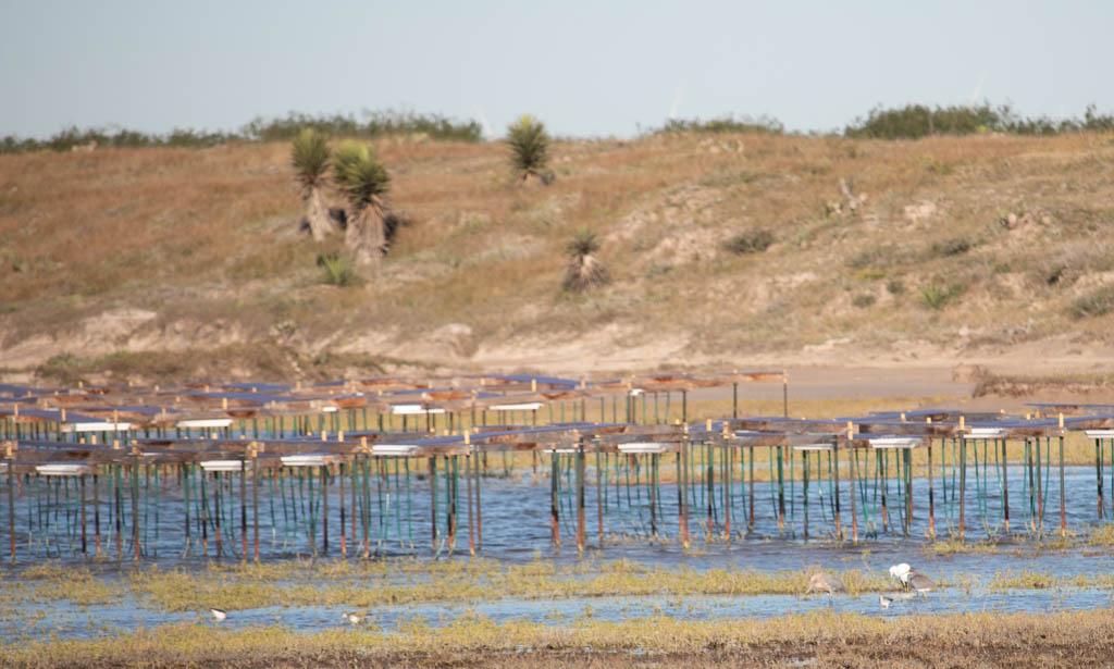 Sensors For Measuring Sea Level Changes