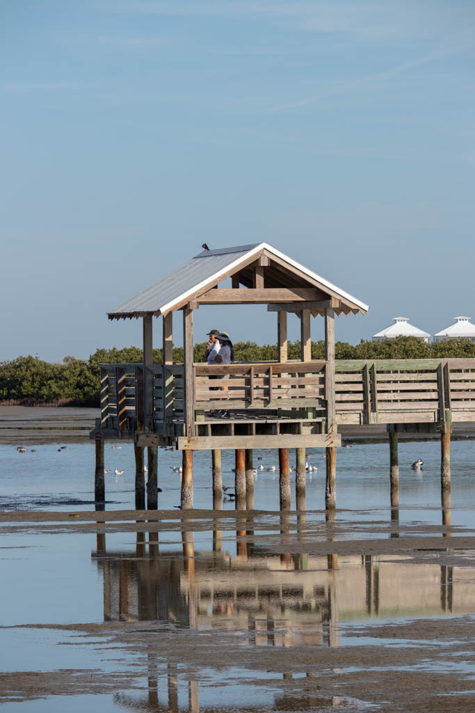Tidal Flat Viewing Station At The End Of The Boardwalk