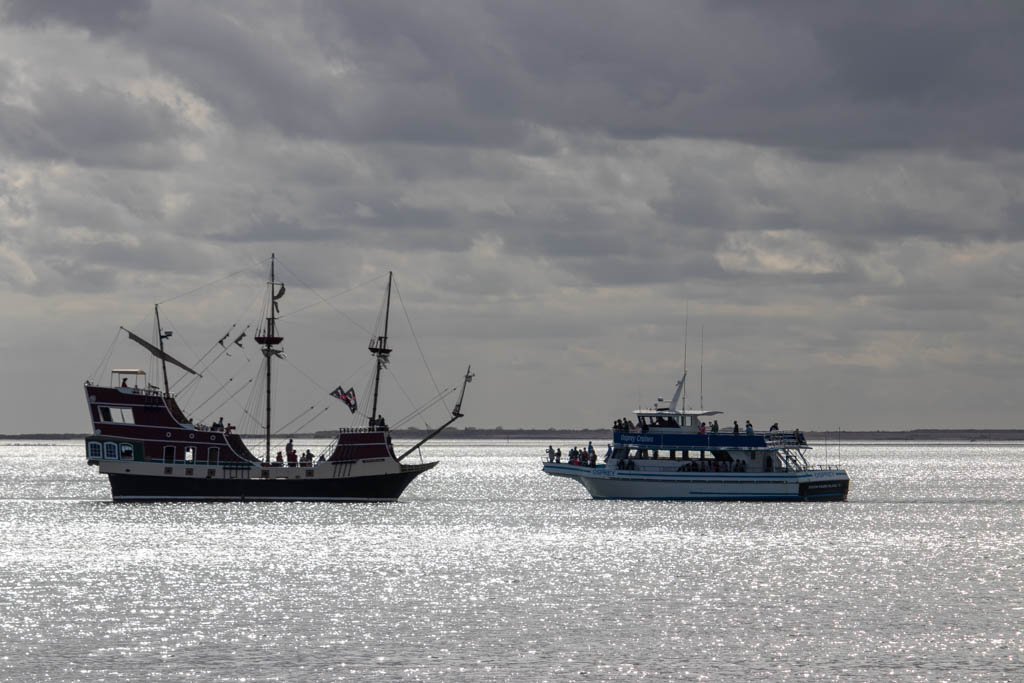 Pirate Ship and the Dolphin 2