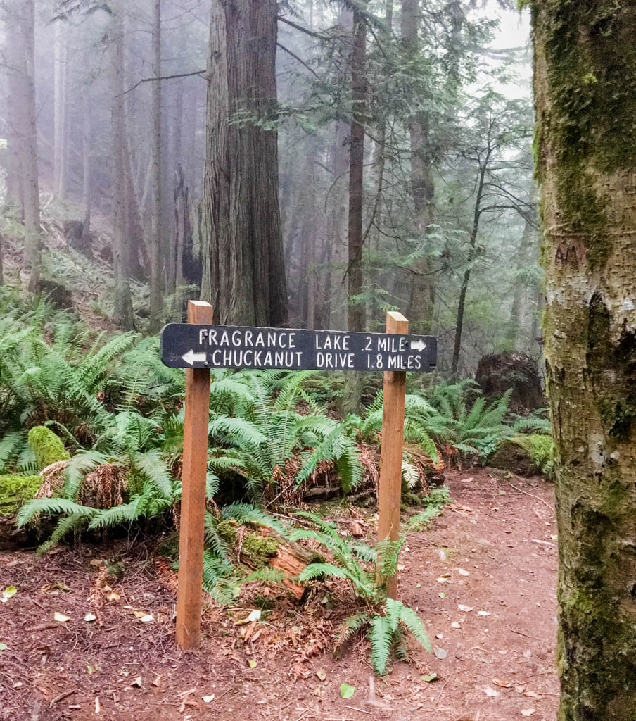 Trail Connects Chuckanut Drive To Fragrance Lake