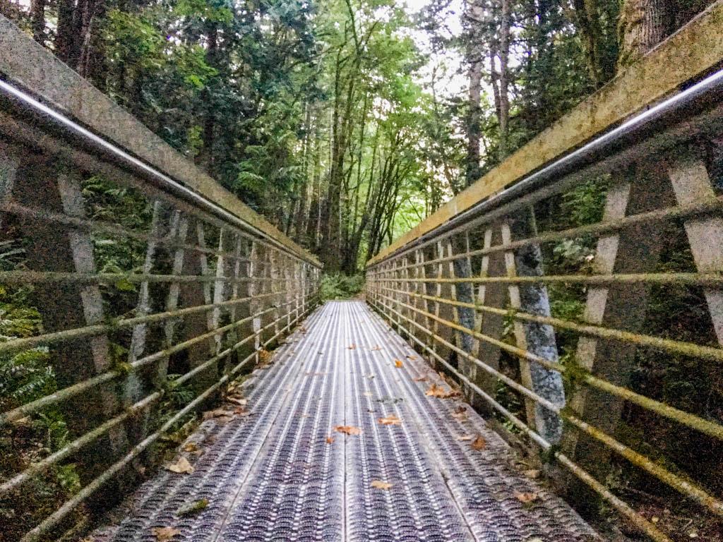 Trail Bridge Over Deep And Steep Ravine
