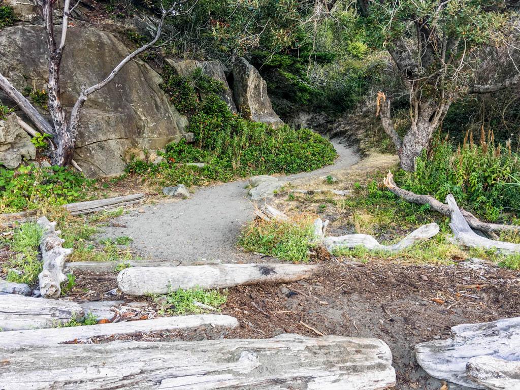 Beach Exit Trail