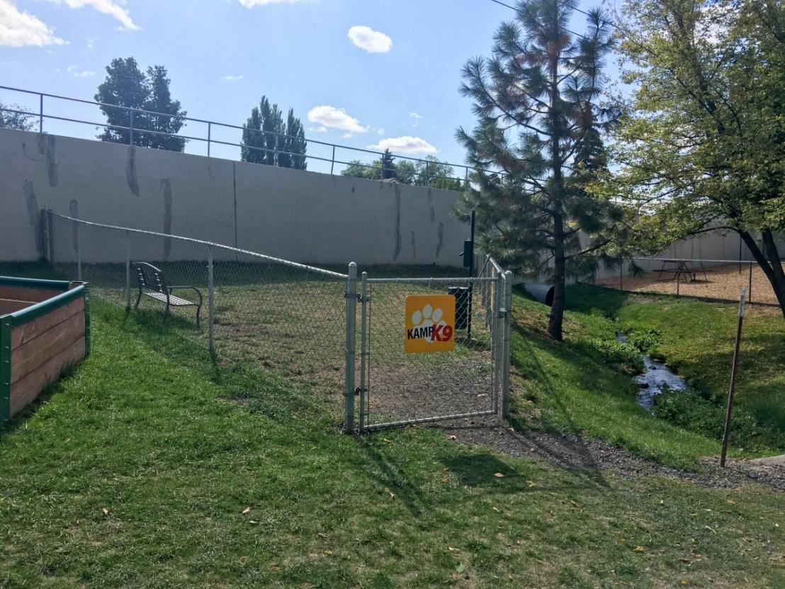 Smallish Overused Dog Park