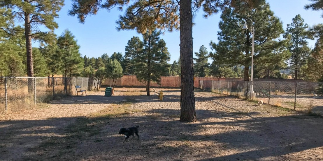 Dog Parks Near The Freeway