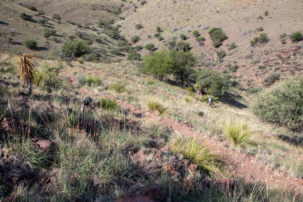 Hiker Navigating Switchbacks