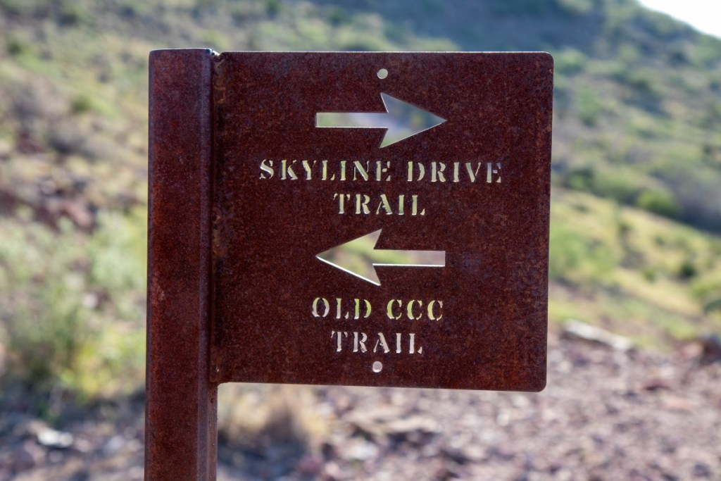 Trail Marker For Skyline Drive and Old CCC Trails