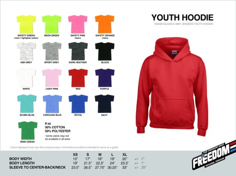Youth Hoodie - Freedom stock colors 2015