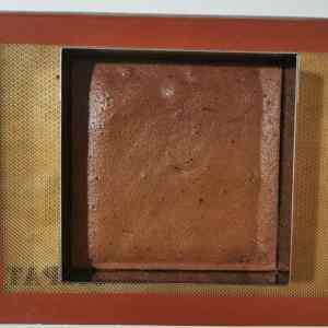 Biscuit chocolat au lait cuit