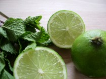 Mint and lime_3