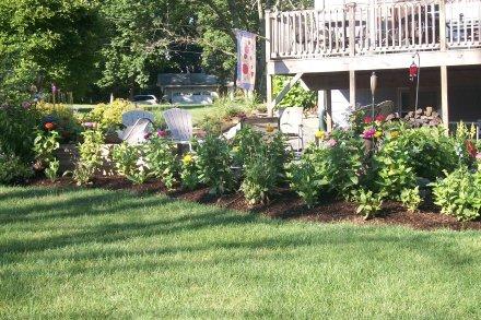 Garden - The Friendly Fig