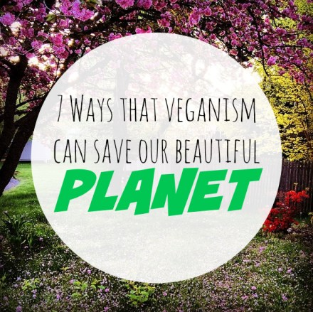 veganism and the environment
