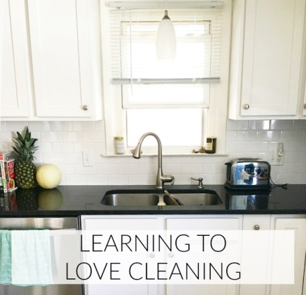 Learn to Love Cleaning Tips