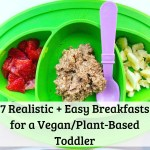 7 Realistic Easy Breakfasts For Vegan Plant Based Toddler