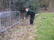 Hedge planting Feb 2015