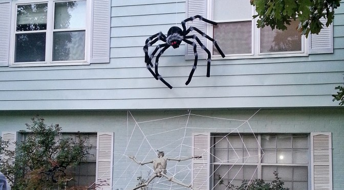 DIY Giant Spiderweb