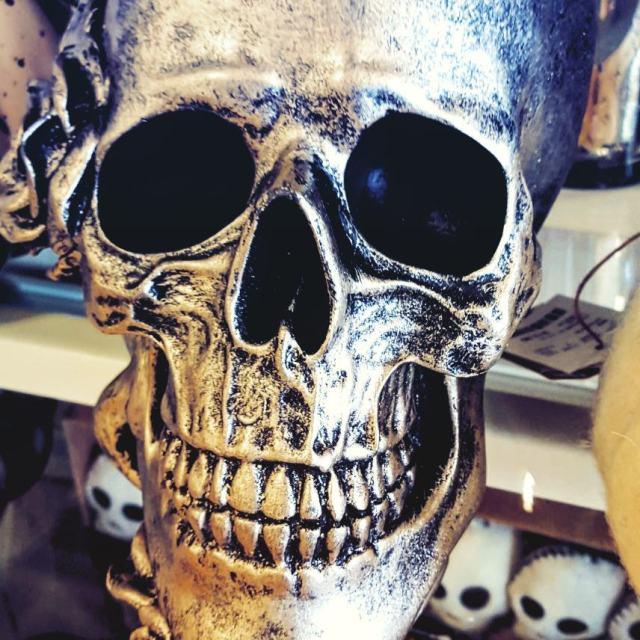 Silver Skull homegoods halloween merchandise skull
