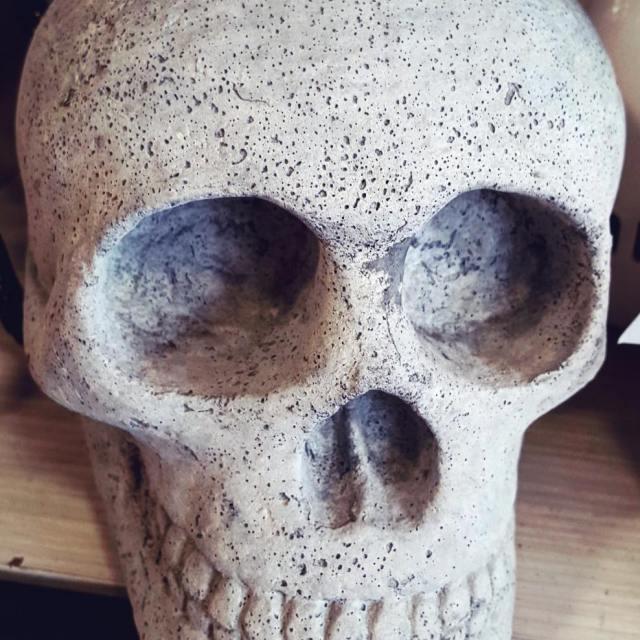 Concrete Skull homegoods halloween merchandise skull