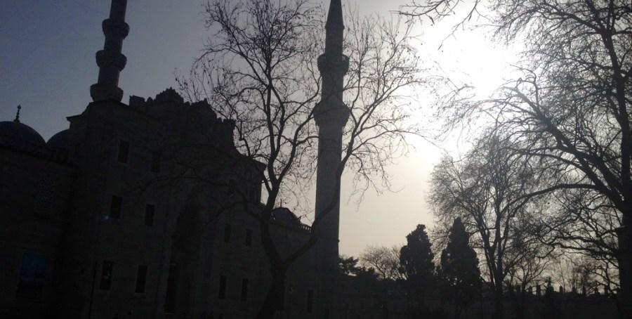 moschealberi_1024