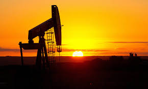 PPL discovers oil in Punjab