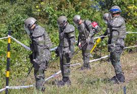 South Korea finds likely war remains during border demining