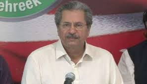 Shafqat flays those inciting people against state institutions