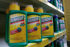 Bayer stock continues rout after $2 billion award in Roundup trial