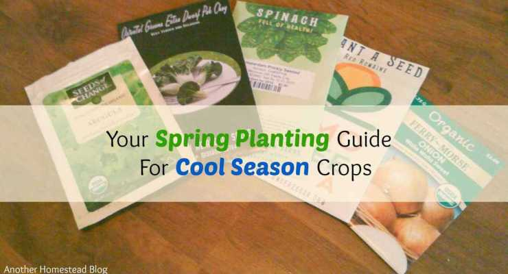 Get The Most Out of Your Garden: Your Early Spring Planting Guide