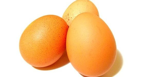 If your chickens stopped laying eggs, it can be frustrating. Here's 10 tips to troubleshoot to get eggs again!