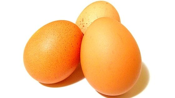 Why Your Chickens Stopped Laying Eggs: 10+ Troubleshooting Tips