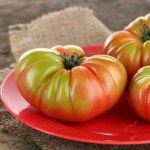 How To Ripen Green Tomatoes!