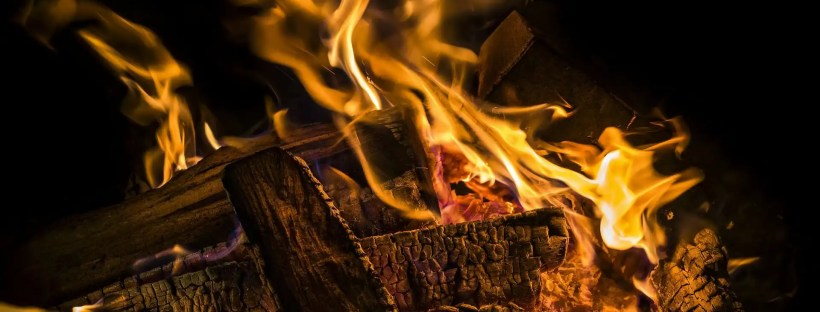 Are you interested in financial independence/early retirement? Learn about starting the FIRE here.