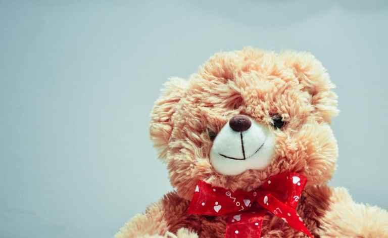 stuffed-bear-animal