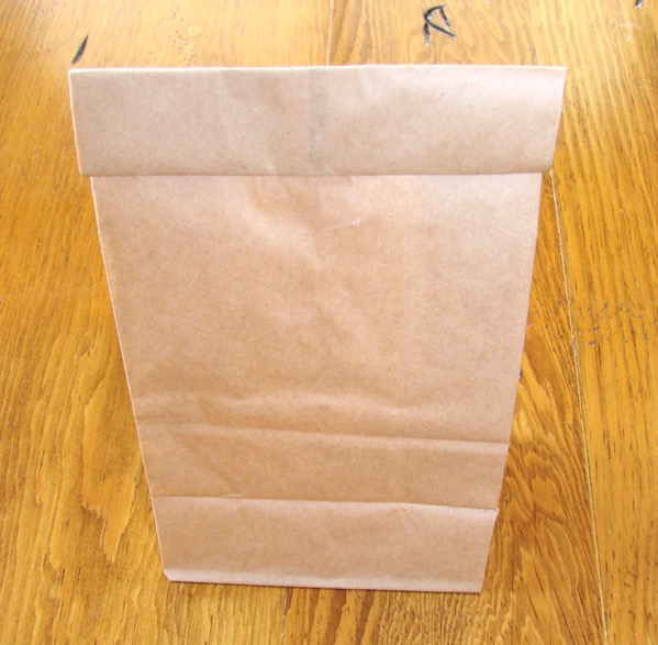 How to Make Microwave Popcorn with Paper Bag