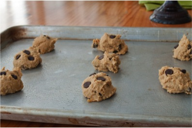 Chocolate Chip Chickpea Cookie Recipe