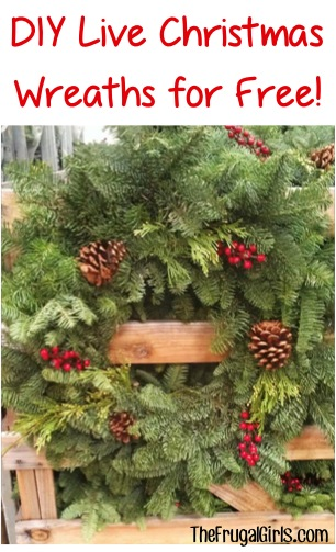 DIY Fresh Christmas Wreaths and Garlands