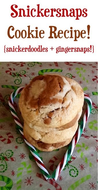 Snickersnaps Cookie Recipe at TheFrugalGirls.com