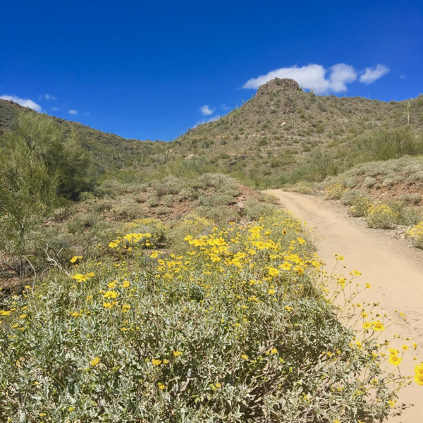 Cave Creek Hiking Trail