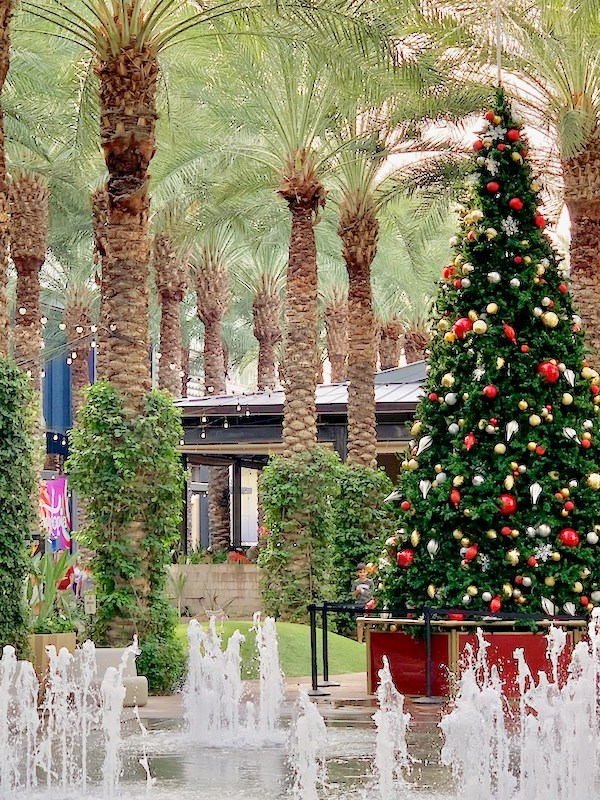 Things to Do in Phoenix at Christmas