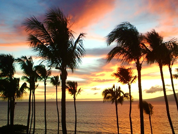 Maui Travel Tips from TheFrugalGirls.com