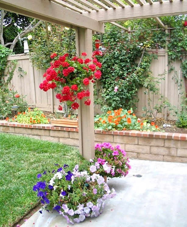 Easy Gardening Tips and Tricks for Beginners