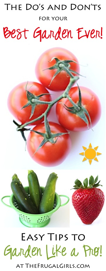 Easy Gardening Tips for Beginners to Pros from TheFrugalGirls.com